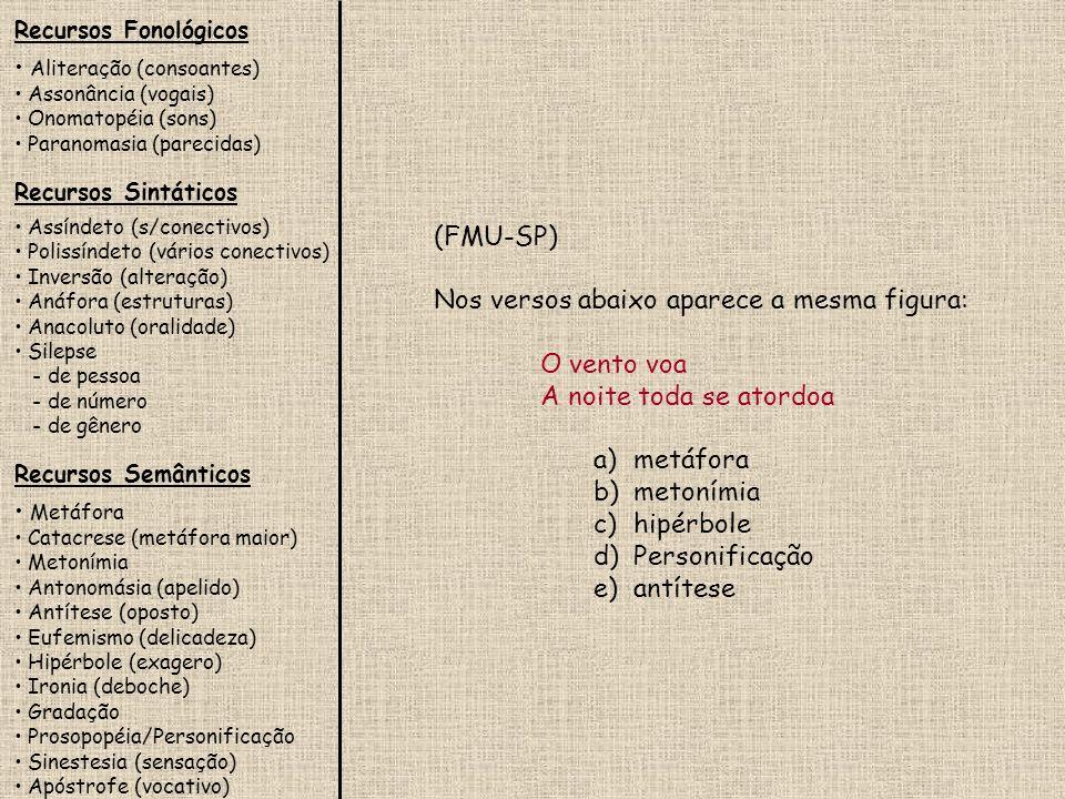 Recursos Fonológicos Aliteração (consoantes) Assonância (vogais) Onomatopéia (sons) Paranomasia (parecidas) Recursos Sintáticos Assíndeto (s/conectivo