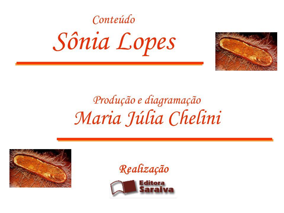 Realização Conteúdo Sônia Lopes Produção e diagramação Maria Júlia Chelini