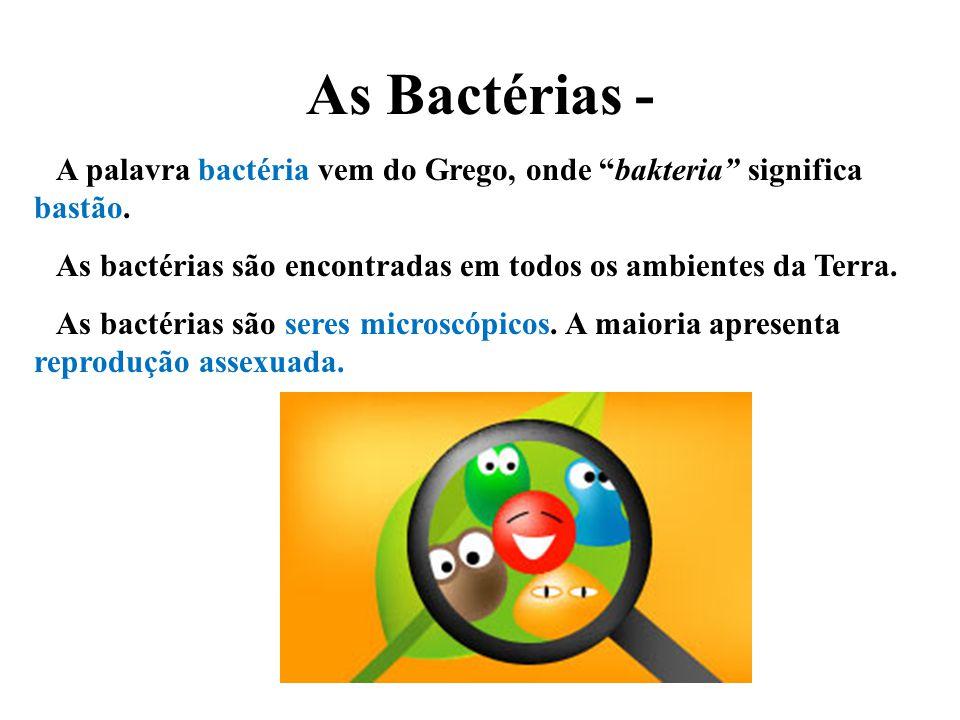 As Bactérias - A palavra bactéria vem do Grego, onde bakteria significa bastão. As bactérias são encontradas em todos os ambientes da Terra. As bactér