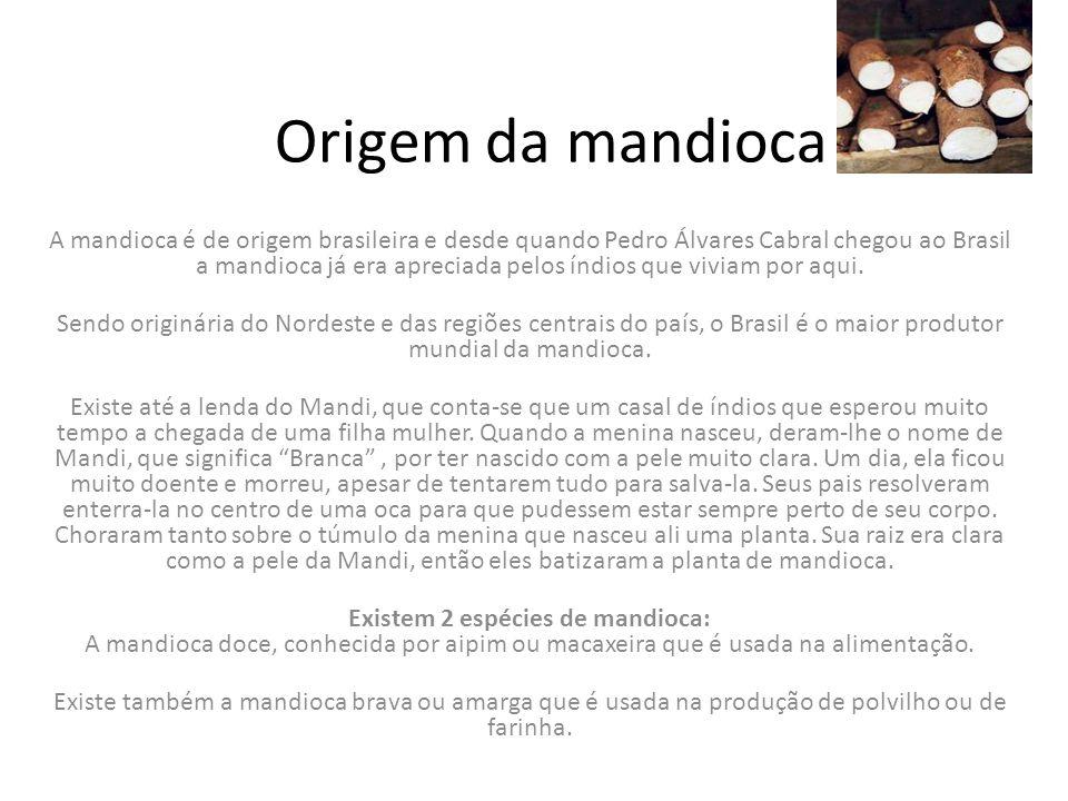 Seus derivados Os principais derivados da mandioca na alimentação são a, amido de mandioca, Polvilho, fécula ou goma fresca e seca,Farinha de mandioca,Polvilho azedo,Tapioca e sagu, Massa puba, Tucupi,Maniçoba.