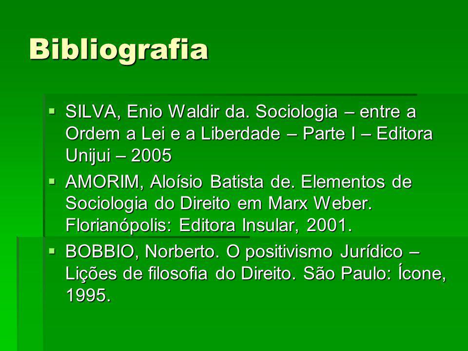 Bibliografia SILVA, Enio Waldir da.