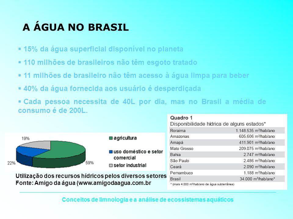Conceitos de limnologia e a análise de ecossistemas aquáticos A ÁGUA NO BRASIL 15% da água superficial disponível no planeta 110 milhões de brasileiro
