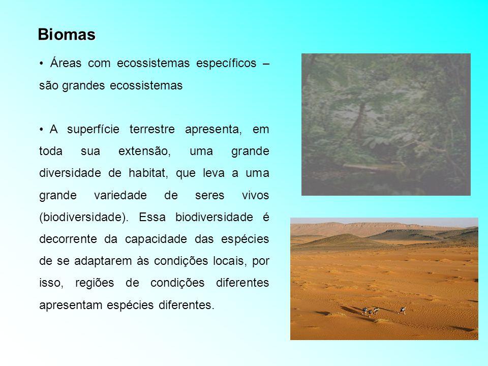 Biomas Terrestres Formação dos biomas terrestres: influenciada pelo clima (temperatura e precipitação) e pelo solo 30% da biosfera Características: variações de temperatura, umidade, luz, pressão, variedade florística e faunística