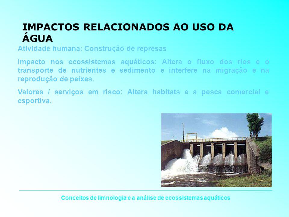 Conceitos de limnologia e a análise de ecossistemas aquáticos IMPACTOS RELACIONADOS AO USO DA ÁGUA Atividade humana: Construção de represas Impacto no