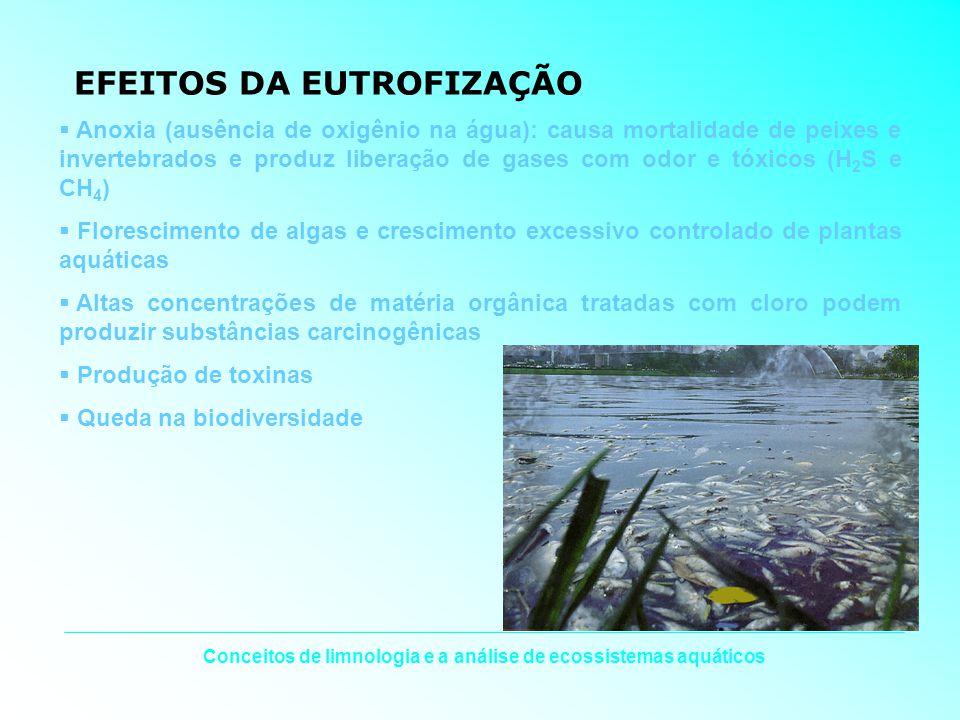 EFEITOS DA EUTROFIZAÇÃO Anoxia (ausência de oxigênio na água): causa mortalidade de peixes e invertebrados e produz liberação de gases com odor e tóxi