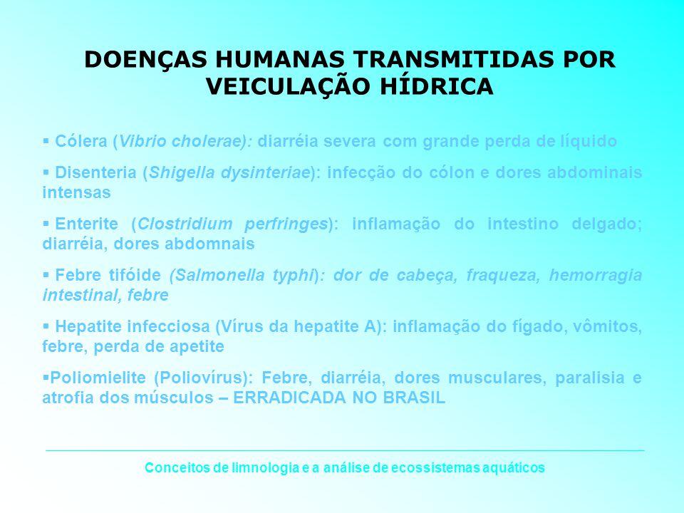 Conceitos de limnologia e a análise de ecossistemas aquáticos DOENÇAS HUMANAS TRANSMITIDAS POR VEICULAÇÃO HÍDRICA Cólera (Vibrio cholerae): diarréia s