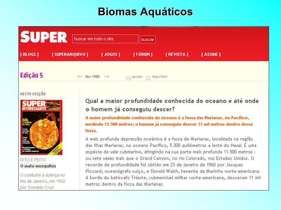 Conceitos de limnologia e a análise de ecossistemas aquáticos PRINCIPAIS USOS DA ÁGUA Mineração