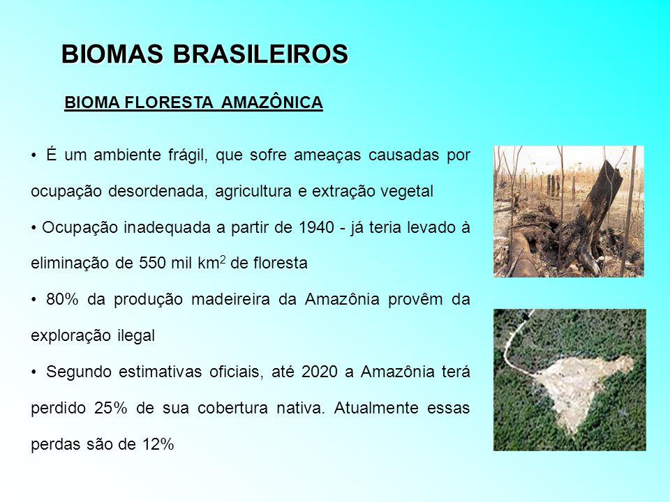 BIOMAS BRASILEIROS É um ambiente frágil, que sofre ameaças causadas por ocupação desordenada, agricultura e extração vegetal Ocupação inadequada a par