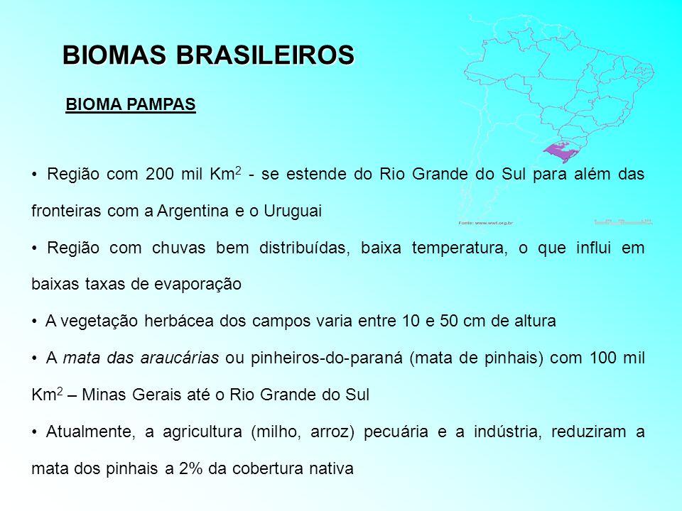 BIOMAS BRASILEIROS Região com 200 mil Km 2 - se estende do Rio Grande do Sul para além das fronteiras com a Argentina e o Uruguai Região com chuvas be