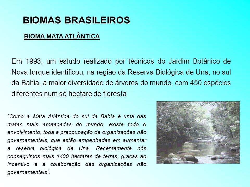 BIOMAS BRASILEIROS BIOMA MATA ATLÂNTICA Em 1993, um estudo realizado por técnicos do Jardim Botânico de Nova Iorque identificou, na região da Reserva