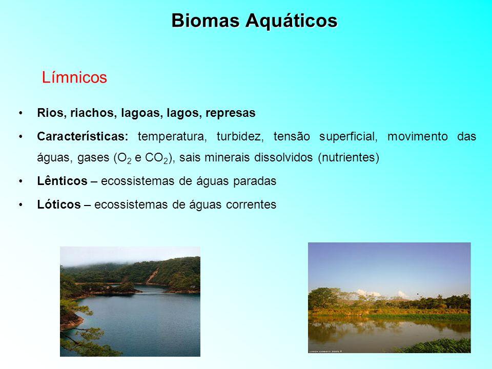 Biomas Aquáticos - Classificação Eutróficos – rico em nutrientes minerais e alta produtividade Mesotróficos – zona intermediária Oligotróficos – pobres em nutrientes minerais e baixa produtividade Nutrientes – água doce e salgada Epilímnio – superior dos lagos (água quente, circulante e rica em O 2 ) Termoclino – zona intermediária (rápida variação da temperatura e no oxigênio com o aumento da profundidade) Hipolímnio – parte inferior (água fria, não circulante e pobre em O 2 ) Temperatura – água doce e salgada