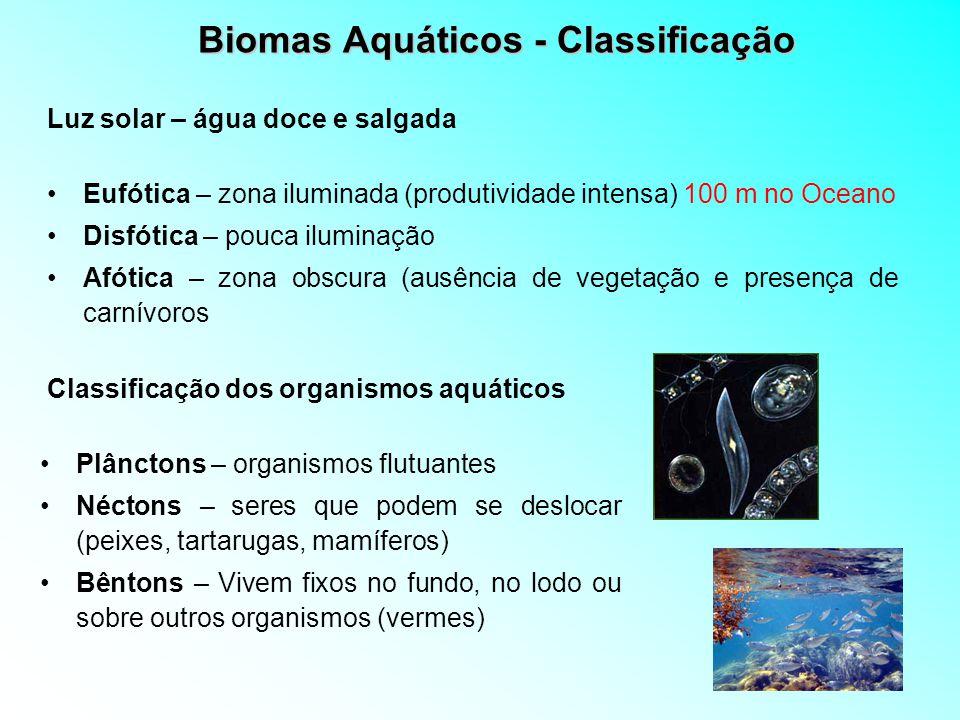 Biomas Aquáticos - Classificação Eufótica – zona iluminada (produtividade intensa) 100 m no Oceano Disfótica – pouca iluminação Afótica – zona obscura