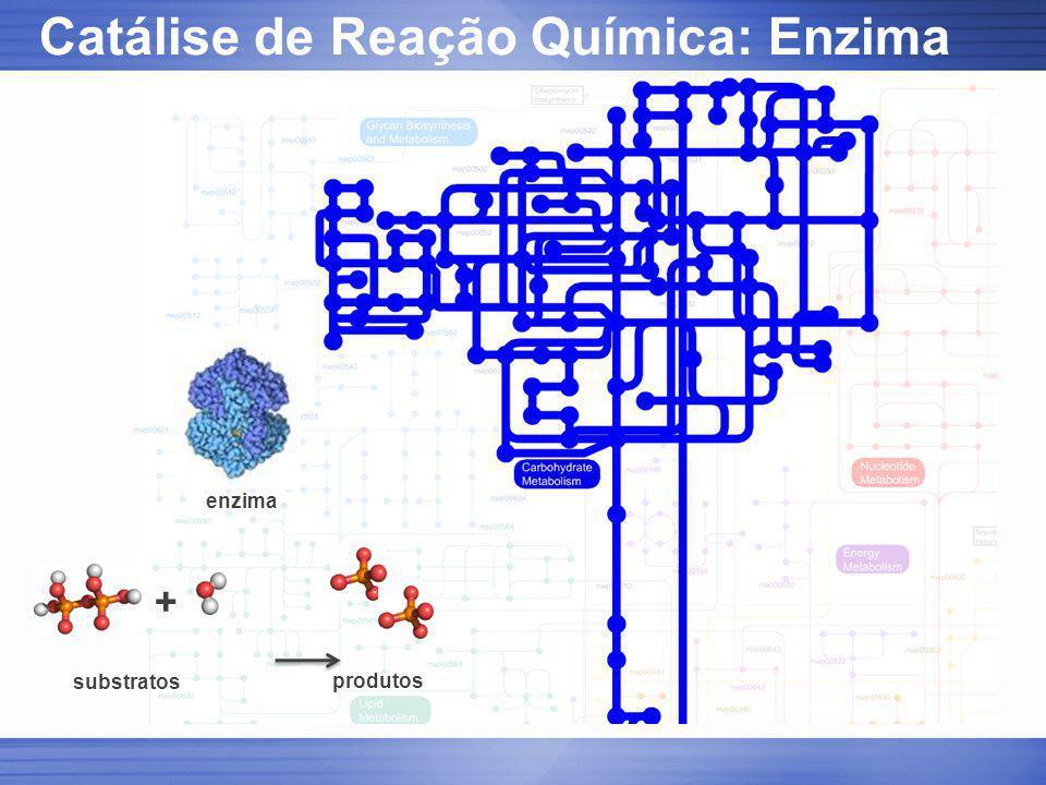 Catálise de Reação Química: Enzima enzima substratos produtos +