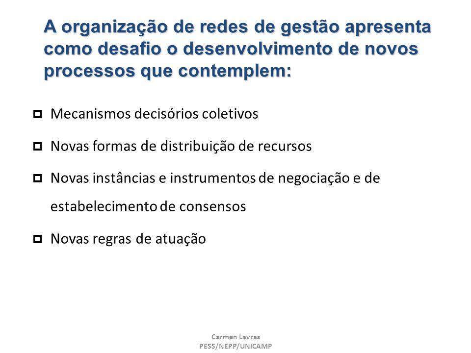 Carmen Lavras PESS/NEPP/UNICAMP A organização de redes de gestão apresenta como desafio o desenvolvimento de novos processos que contemplem: Mecanismo