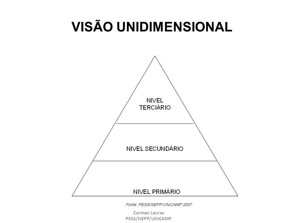 Carmen Lavras PESS/NEPP/UNICAMP VISÃO UNIDIMENSIONAL Fonte: PESS/NEPP/UNICAMP 2007