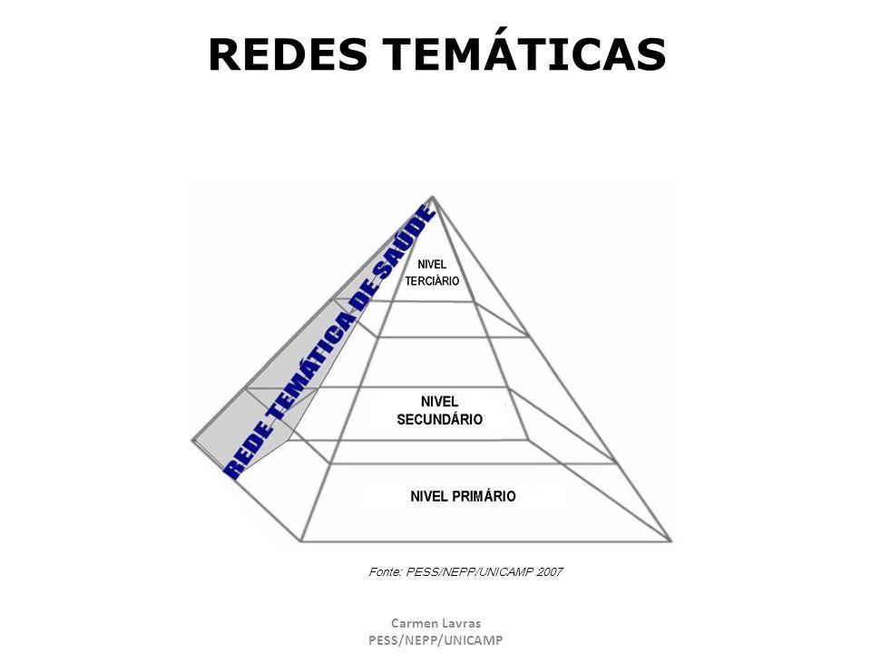 Carmen Lavras PESS/NEPP/UNICAMP REDES TEMÁTICAS Fonte: PESS/NEPP/UNICAMP 2007
