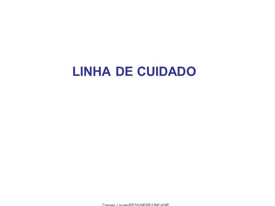LINHA DE CUIDADO Carmen Lavras/PESS/NEPP/UNICAMP