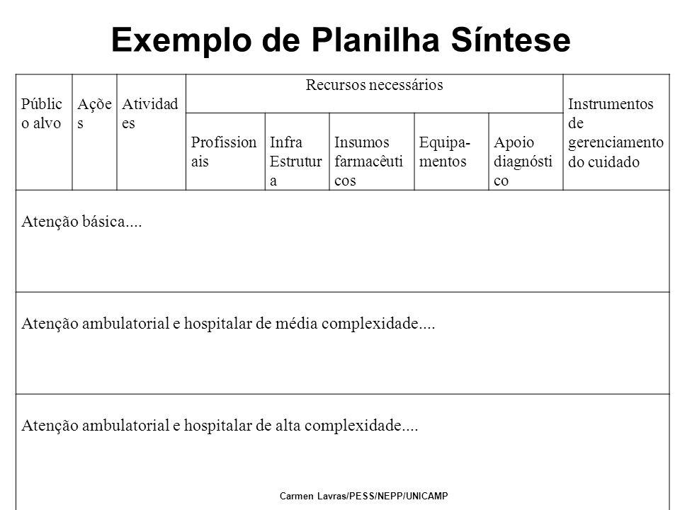 Carmen Lavras/PESS/NEPP/UNICAMP Públic o alvo Açõe s Atividad es Recursos necessários Instrumentos de gerenciamento do cuidado Profission ais Infra Es