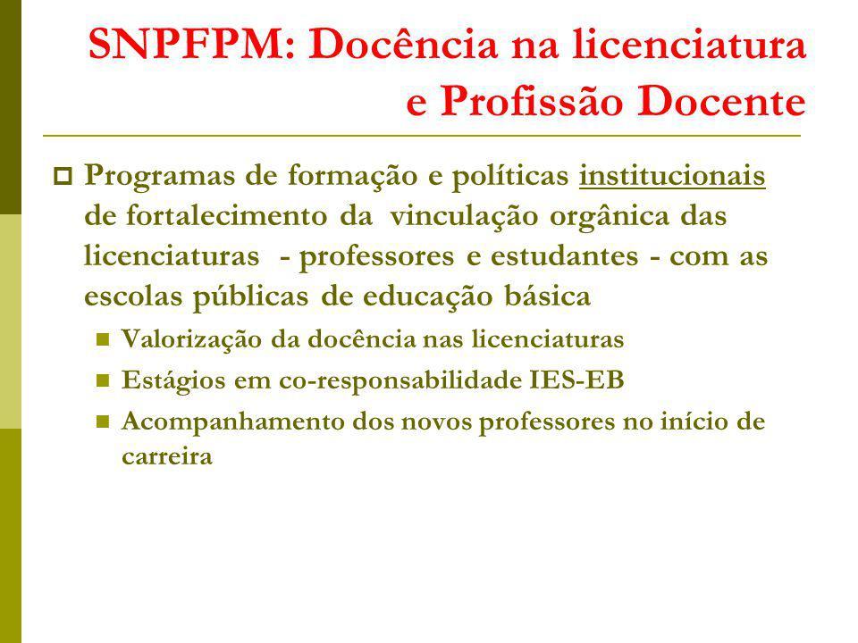 SNPFPM: Docência na licenciatura e Profissão Docente Programas de formação e políticas institucionais de fortalecimento da vinculação orgânica das lic