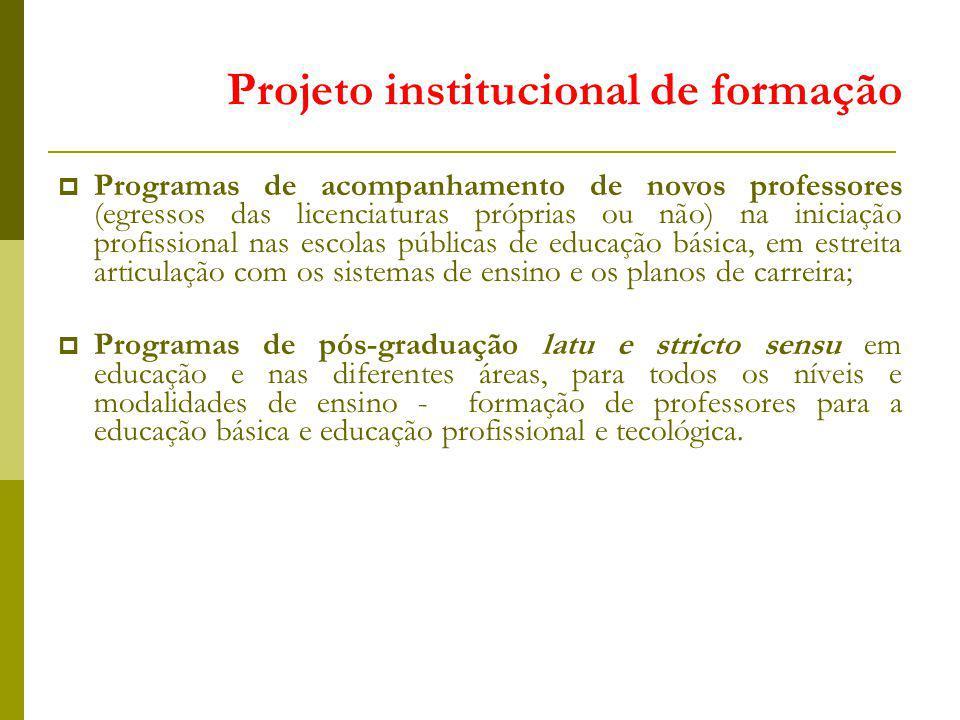 Programas de acompanhamento de novos professores (egressos das licenciaturas próprias ou não) na iniciação profissional nas escolas públicas de educaç