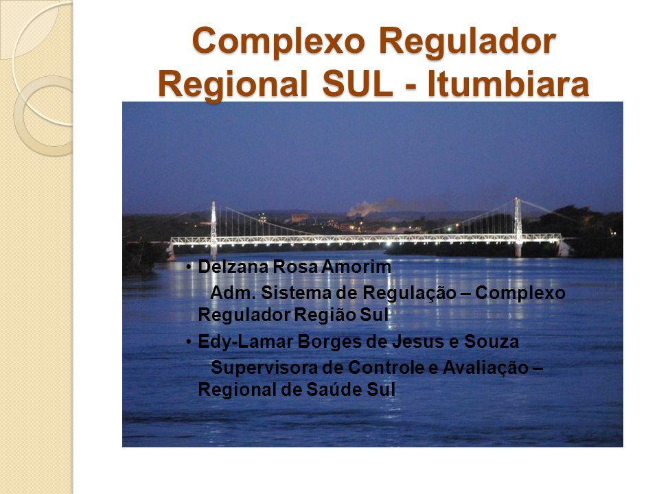 Complexo Regulador Regional SUL - Itumbiara Delzana Rosa Amorim Adm. Sistema de Regulação – Complexo Regulador Região Sul Edy-Lamar Borges de Jesus e
