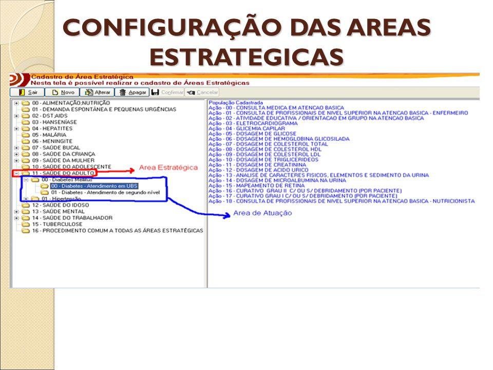 CONFIGURAÇÃO DAS AREAS ESTRATEGICAS
