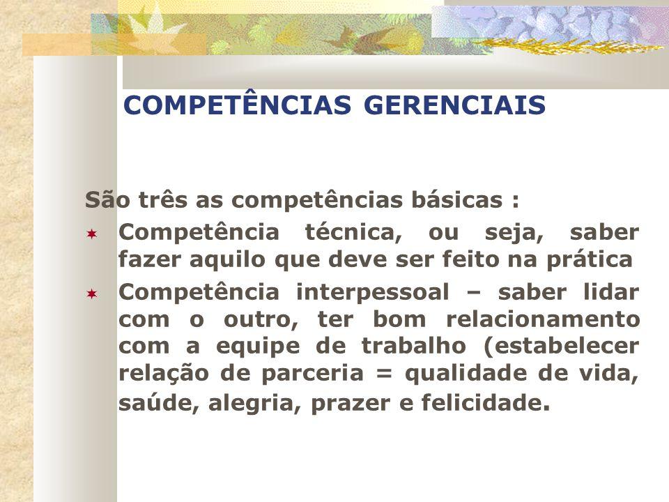 COMPETÊNCIAS GERENCIAIS São três as competências básicas : Competência técnica, ou seja, saber fazer aquilo que deve ser feito na prática Competência