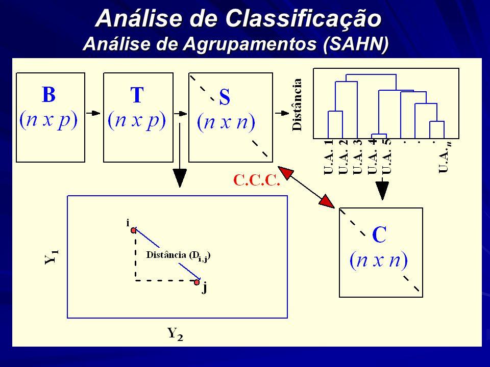 Análise de Classificação Análise de Agrupamentos (SAHN)