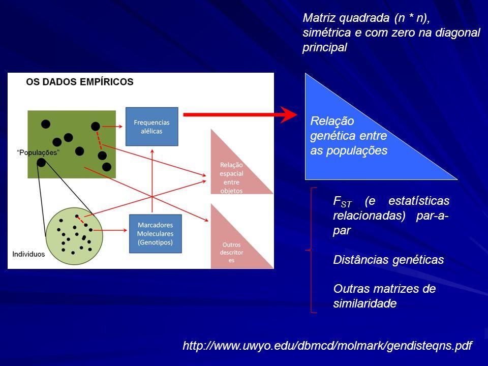 Relação genética entre as populações F ST (e estatísticas relacionadas) par-a- par Distâncias genéticas Outras matrizes de similaridade Matriz quadrada (n * n), simétrica e com zero na diagonal principal http://www.uwyo.edu/dbmcd/molmark/gendisteqns.pdf