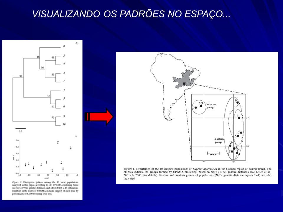 VISUALIZANDO OS PADRÕES NO ESPAÇO...