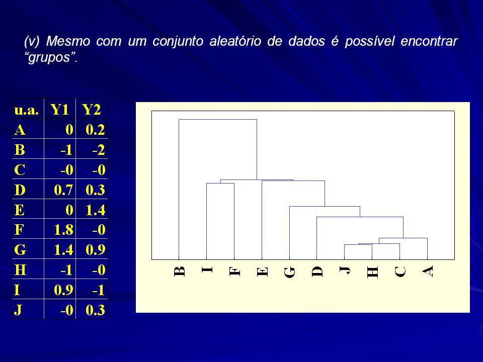 (v) Mesmo com um conjunto aleatório de dados é possível encontrar grupos.