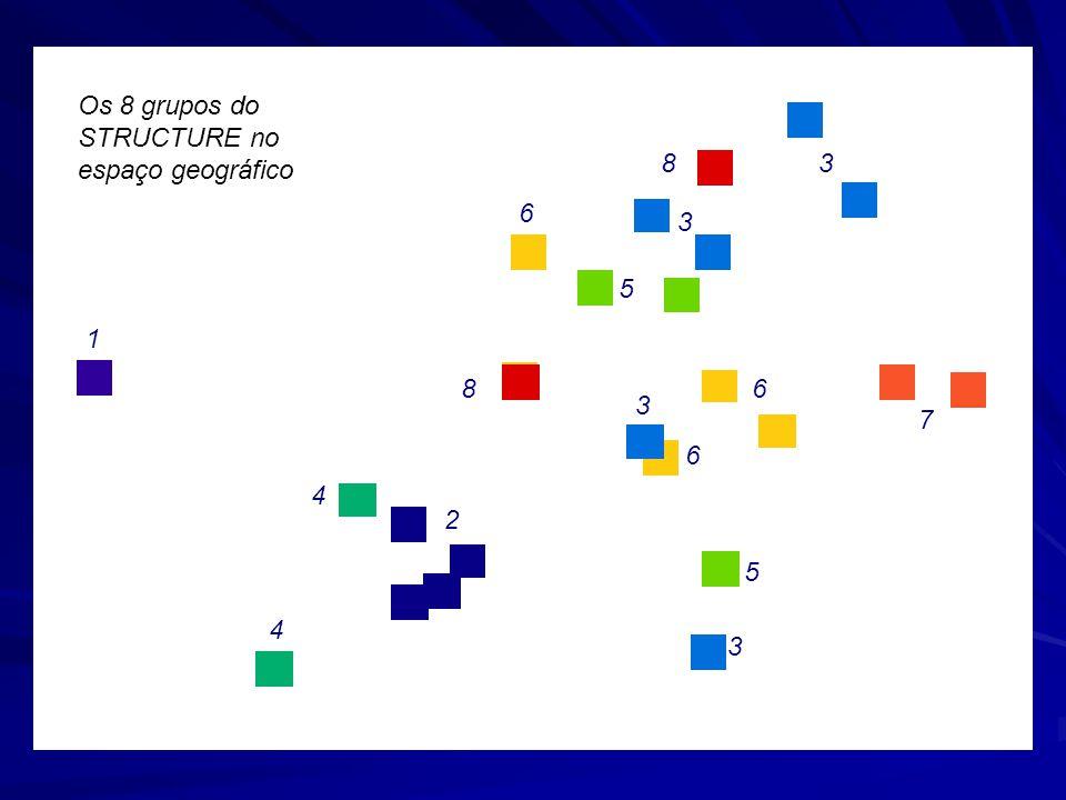 1 4 4 2 8 83 3 5 6 6 3 3 5 7 6 Os 8 grupos do STRUCTURE no espaço geográfico