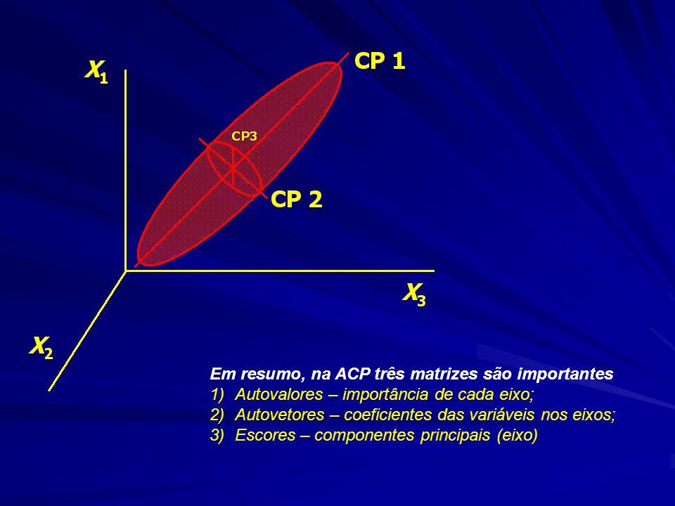 Em resumo, na ACP três matrizes são importantes 1)Autovalores – importância de cada eixo; 2)Autovetores – coeficientes das variáveis nos eixos; 3)Escores – componentes principais (eixo)