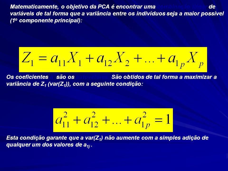 Matematicamente, o objetivo da PCA é encontrar uma combinação linear de variáveis de tal forma que a variância entre os indivíduos seja a maior possível (1 o componente principal): Os coeficientes a são os autovetores.