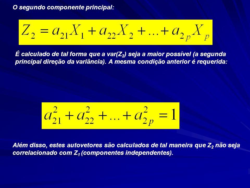 O segundo componente principal: É calculado de tal forma que a var(Z 2 ) seja a maior possível (a segunda principal direção da variância).