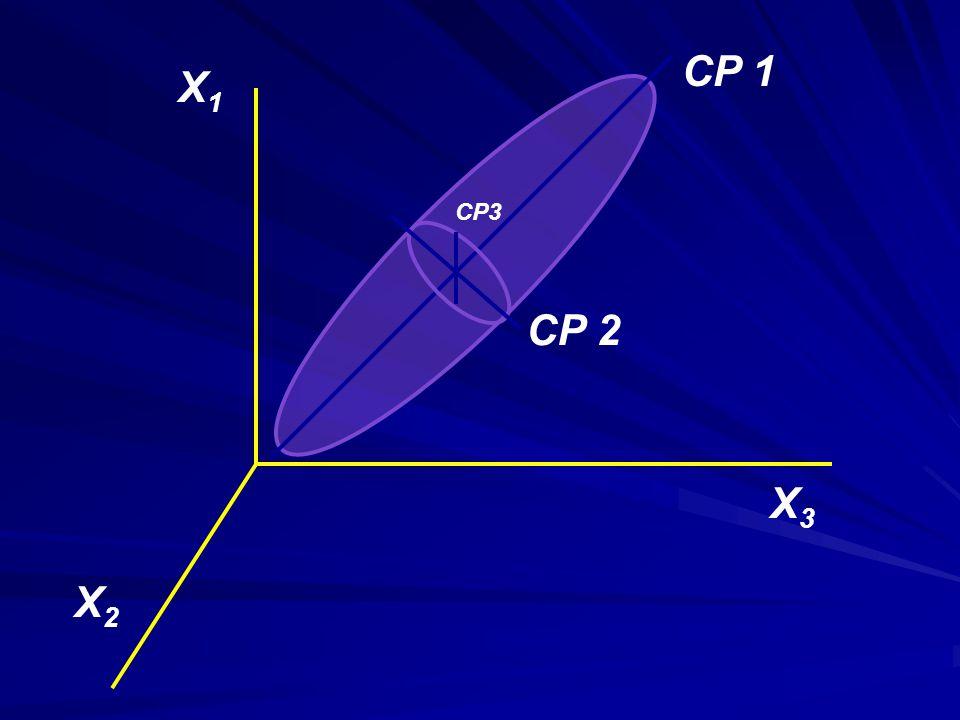 CP 1 CP 2 CP3 X1X1 X2X2 X3X3