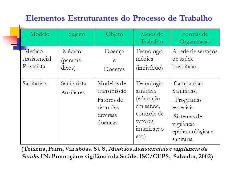Elementos Estruturantes do Processo de Trabalho.Campanhas Sanitárias,. Programas especiais.Sistemas de vigilância epidemiológica e sanitária Tecnologi