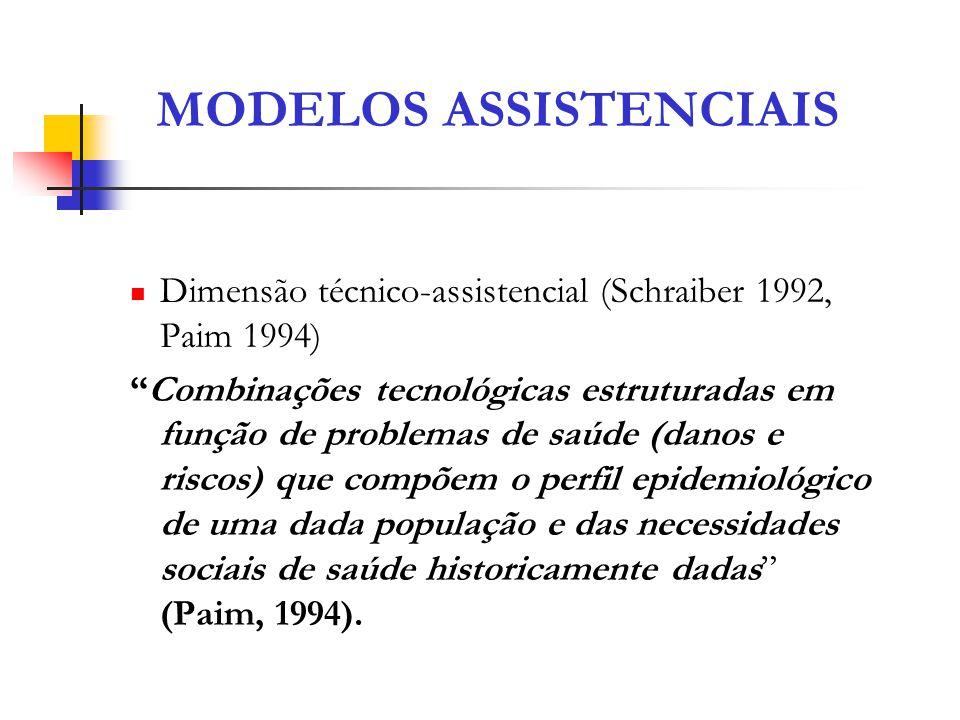 Dimensão técnico-assistencial (Schraiber 1992, Paim 1994) Combinações tecnológicas estruturadas em função de problemas de saúde (danos e riscos) que c