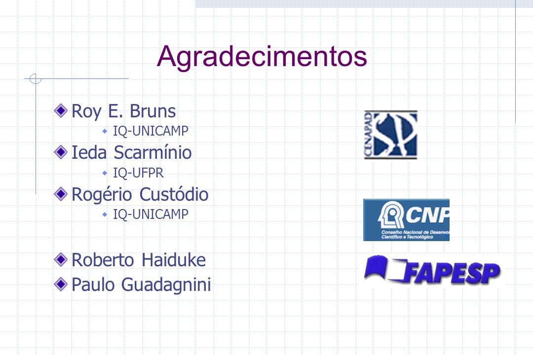 Agradecimentos Roy E. Bruns IQ-UNICAMP Ieda Scarmínio IQ-UFPR Rogério Custódio IQ-UNICAMP Roberto Haiduke Paulo Guadagnini