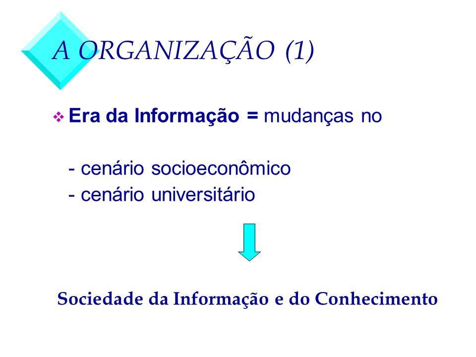 A ORGANIZAÇÃO (1) v Era da Informação = mudanças no - cenário socioeconômico - cenário universitário Sociedade da Informação e do Conhecimento