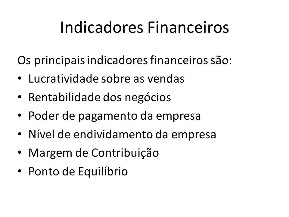 Os principais indicadores financeiros são: Lucratividade sobre as vendas Rentabilidade dos negócios Poder de pagamento da empresa Nível de endividamen