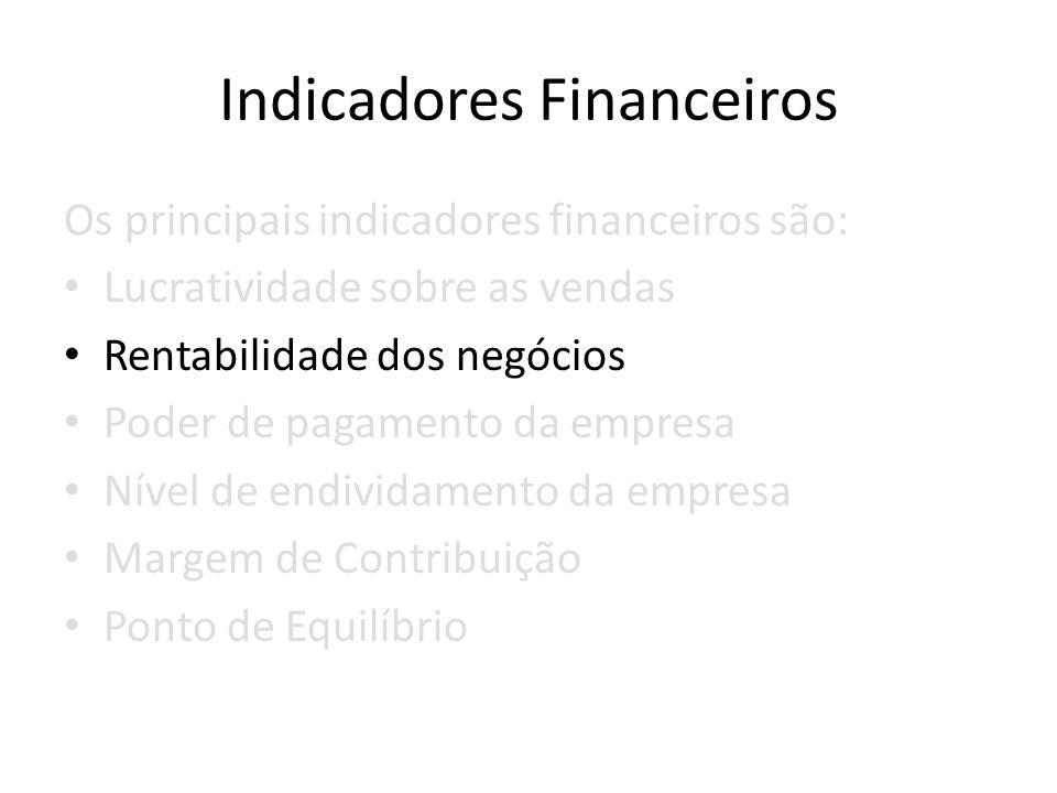 Indicadores Financeiros Os principais indicadores financeiros são: Lucratividade sobre as vendas Rentabilidade dos negócios Poder de pagamento da empr