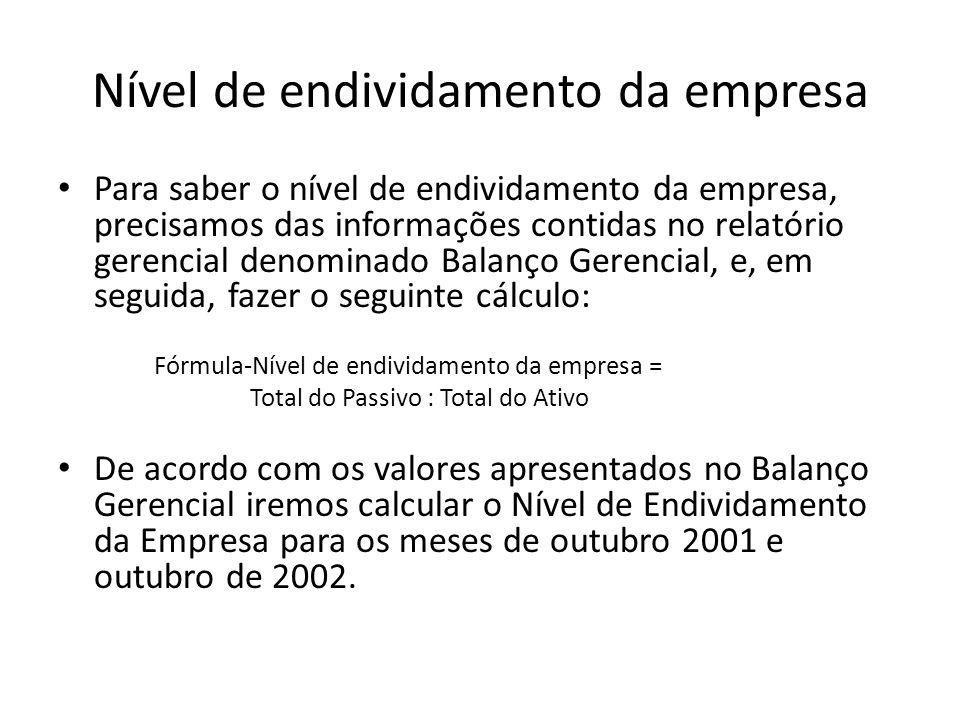 Nível de endividamento da empresa Para saber o nível de endividamento da empresa, precisamos das informações contidas no relatório gerencial denominad