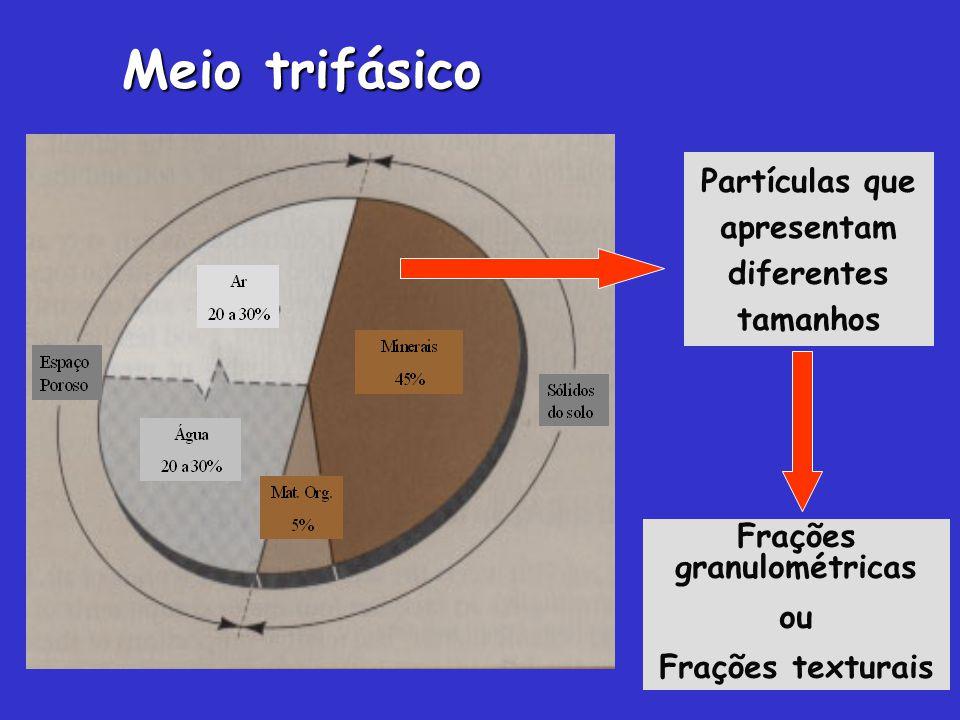Partículas que apresentam diferentes tamanhos Frações granulométricas ou Frações texturais Meio trifásico