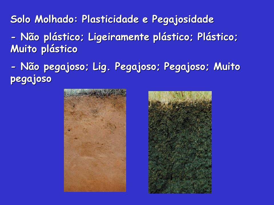 Solo Molhado: Plasticidade e Pegajosidade - Não plástico; Ligeiramente plástico; Plástico; Muito plástico - Não pegajoso; Lig. Pegajoso; Pegajoso; Mui