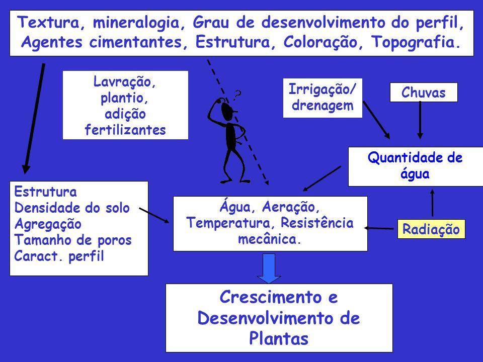 Textura, mineralogia, Grau de desenvolvimento do perfil, Agentes cimentantes, Estrutura, Coloração, Topografia. Estrutura Densidade do solo Agregação