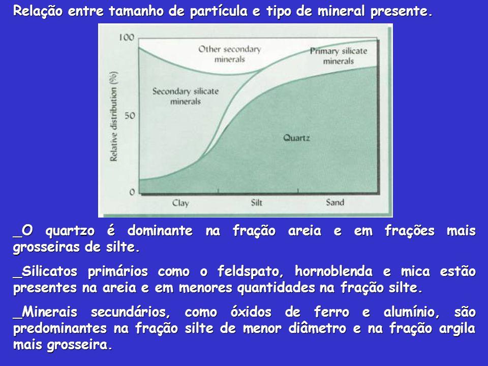 Relação entre tamanho de partícula e tipo de mineral presente. _O quartzo é dominante na fração areia e em frações mais grosseiras de silte. _Silicato