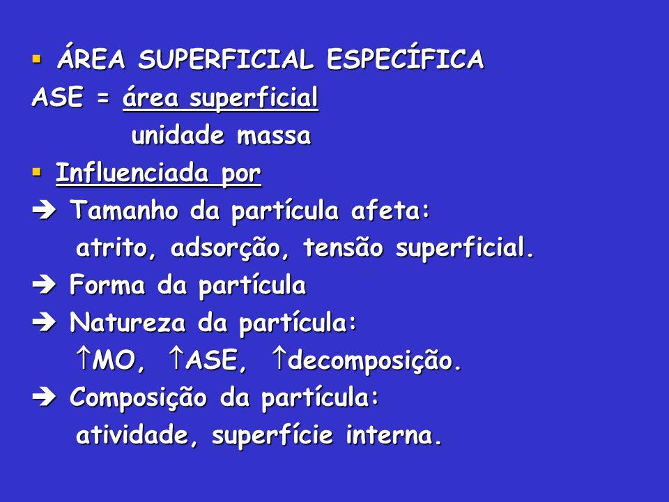 ÁREA SUPERFICIAL ESPECÍFICA ÁREA SUPERFICIAL ESPECÍFICA ASE = área superficial unidade massa unidade massa Influenciada por Influenciada por Tamanho d
