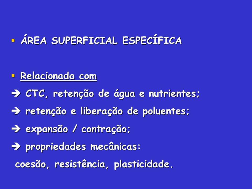 ÁREA SUPERFICIAL ESPECÍFICA ÁREA SUPERFICIAL ESPECÍFICA Relacionada com Relacionada com CTC, retenção de água e nutrientes; CTC, retenção de água e nu