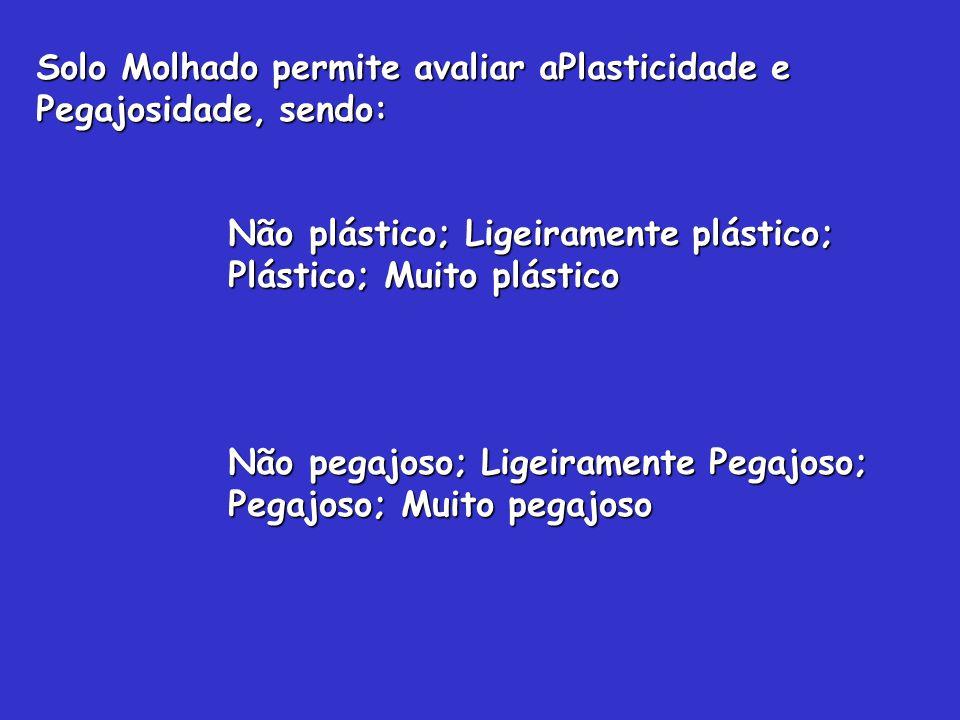 Solo Molhado permite avaliar aPlasticidade e Pegajosidade, sendo: Não plástico; Ligeiramente plástico; Plástico; Muito plástico Não pegajoso; Ligeiram